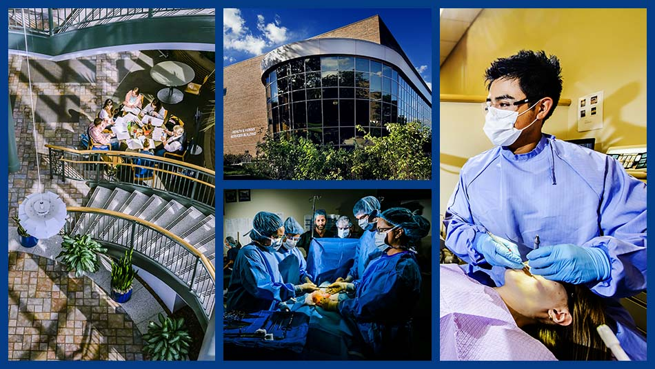 Health and Human Services image collage featuring the building's exterior, a spiral staircase within the building's foyer, a group of students practicing surgery, and a student practicing dentistry on a patient